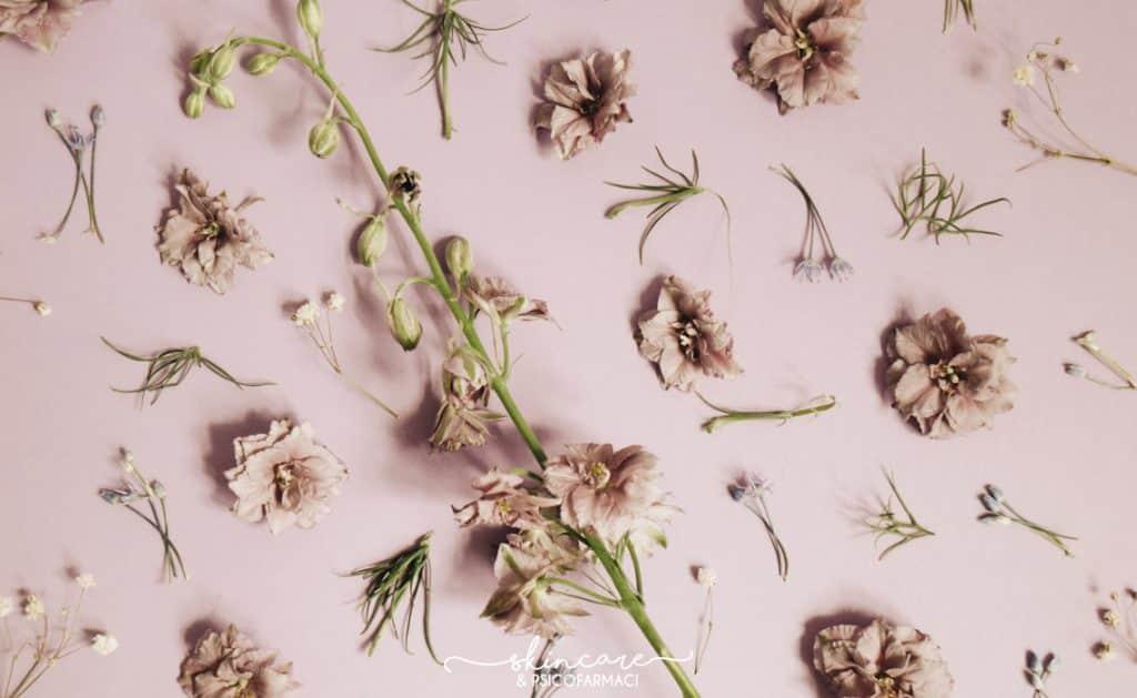 fiori su sfondo rosa